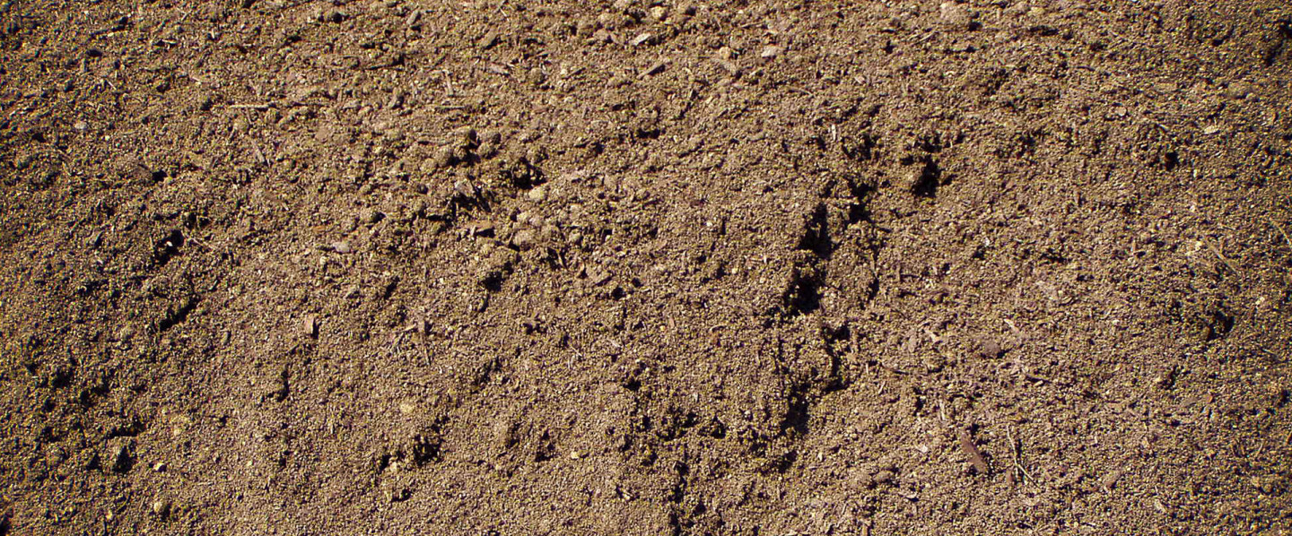 Top-Notch Soil You Won't Find Anywhere Else